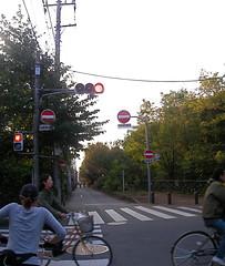 Tamagawa Josui Road