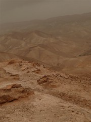 Desert Judee 06