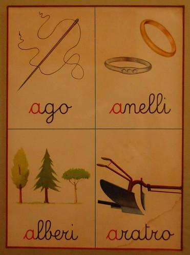 Ago, anelli, alberi, aratro