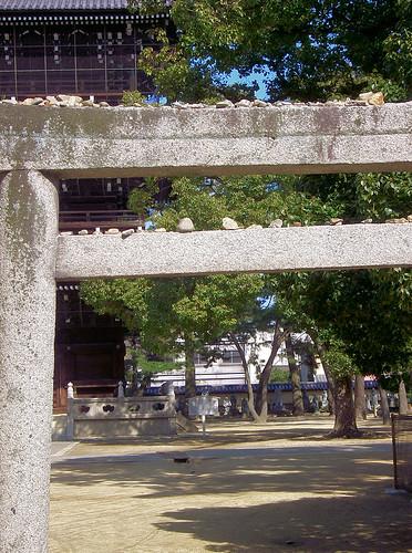 Mis piedras en el torii