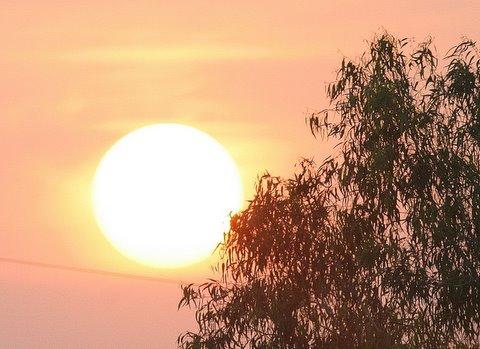 Sunrise 2008
