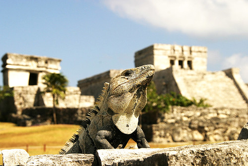 The Monster of Tulum