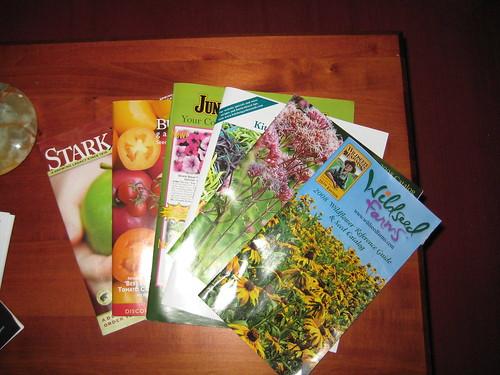 Catalog season