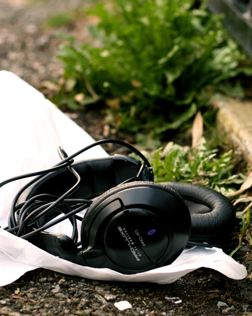 Hidden Treasures Headphones