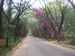 BarcampBangalore6 28