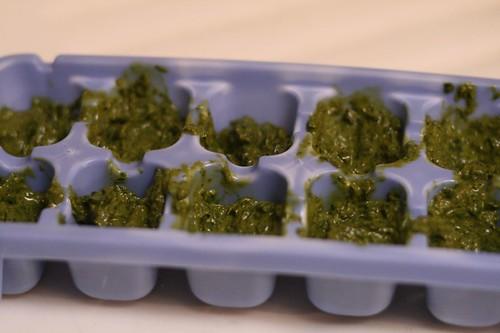 Fill ice cube tray with basil puree