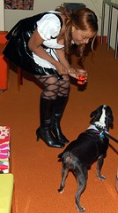 Pam Playing with Oreo at Eleven80 Halloween Party