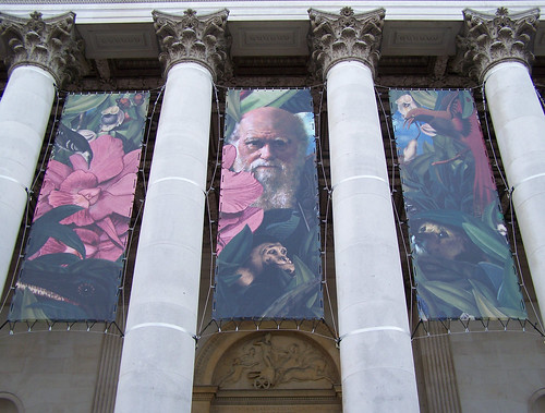 Endless Forms, Darwin Art Exhibit at The Fitzwilliam Museum, University of Cambridge