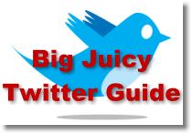 Big Juicy Twitter Guide