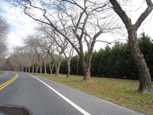 Taken Feb 2008
