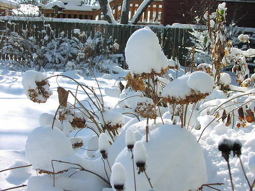 Snow on the Annabelles