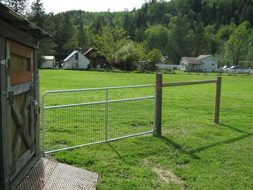 Front Pasture May 09 (Medium)