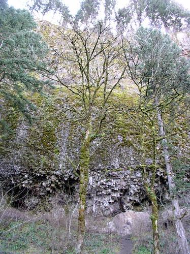 sedimentary-caves