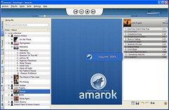 Amarok_windows