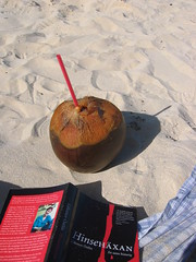 All you need on the beach - a good book and a coconut