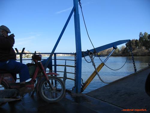 Guadalquivir desde la barcaza de Coria