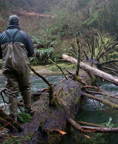 Oregon Coast Winter Steelheading