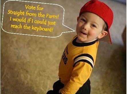 Voting Cutie!