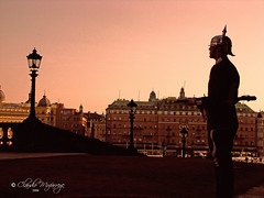 Stockholm, Sweden 073 - Early morning - Royal ...