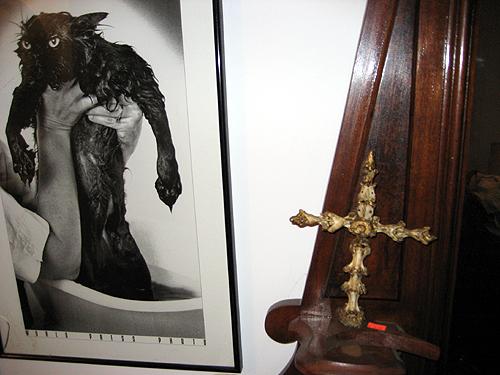 Wet cat and vertebra crucifix