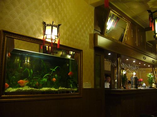 Prague Chinese Billy O'Hare