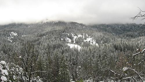 Snowshoeing - 51