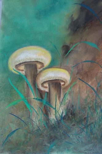 粉彩_蕈菇