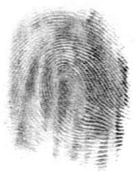 Fingerprintonpaper