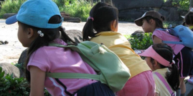到台北的五場約會:木柵動物園看熊貓(4.8ys)