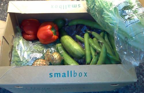 River Nene Organic Veg Box 17/07/08