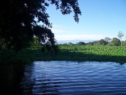 Humedal de San San Pond, alimentado por las aguas del Rio Changuinola en Bocas del Toro