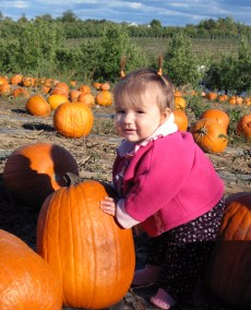 Nattie & Pumpkins