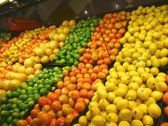 Sunny citrus
