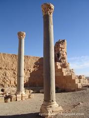 Eastern Alheer Palace قصر ال�ير الشرقي