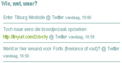 Twitter op Hyves in je Wie, wat, waar (2)