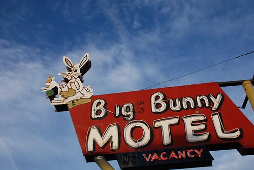 Bugs Bunny Motel