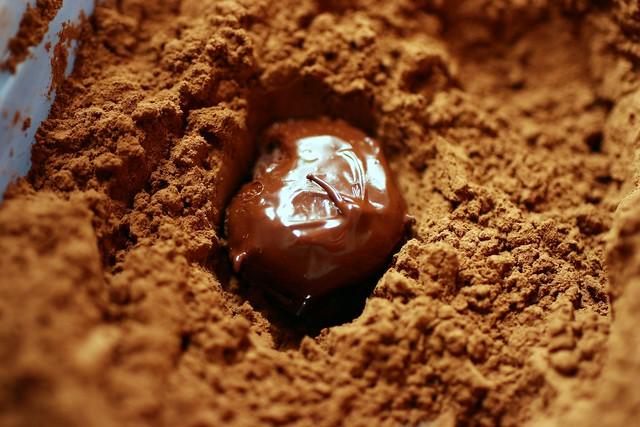 truffle in cocoa