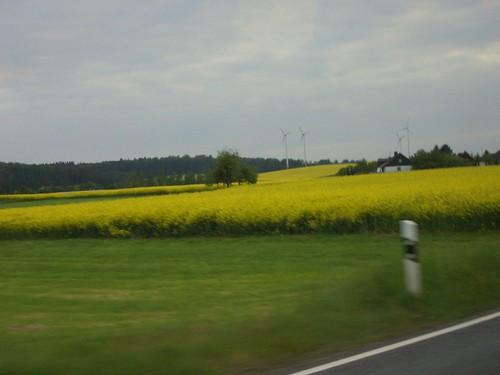 ירוק צהוב