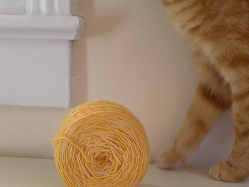 Orange Yarn, Orange Cat