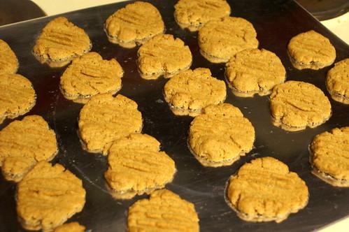g-f pb cookies