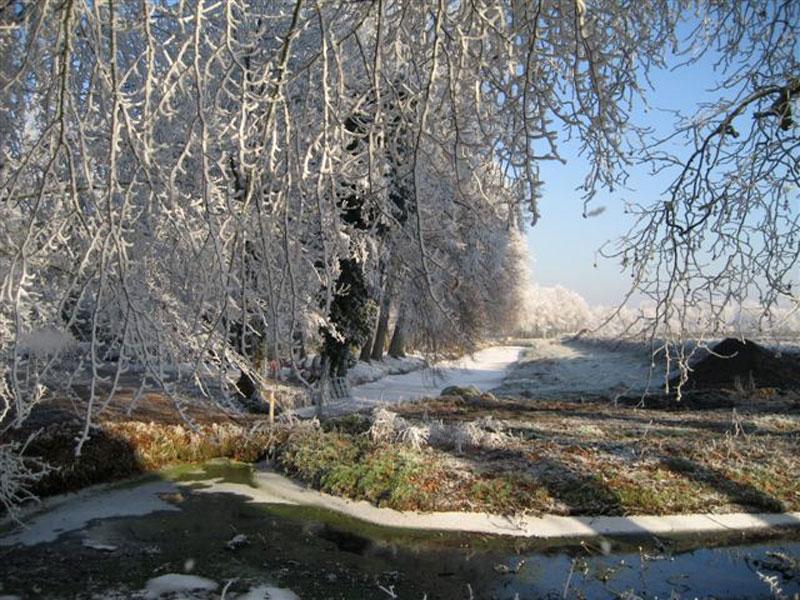 Winter-2007-031