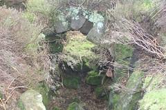Armouth Wath Adit Remains