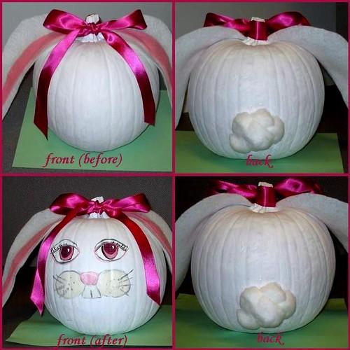 bunny pumpkin project