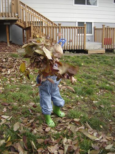 leaf fight