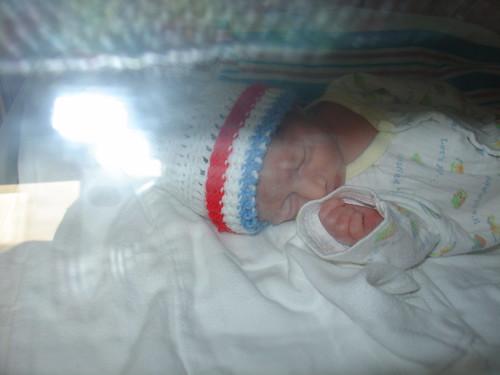 in the incubator