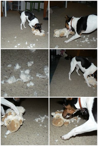 Ruby's Toy Carnage