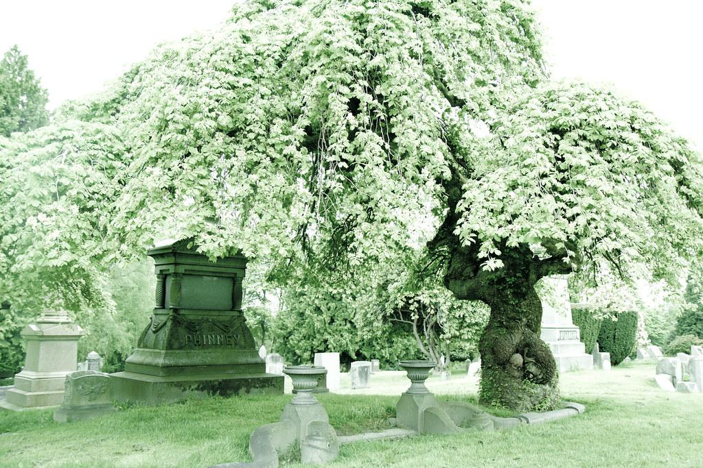 Phinney family gravesite