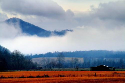 The Fertile Valley
