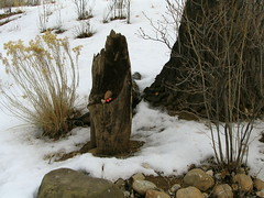 Contemplation, Mabel Dodge Luhan House, Taos, New Mexico, February 2007, photo © 2007 by QuoinMonkey. All rights reserved