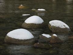 Lynn Creek, 27 Jan 2008